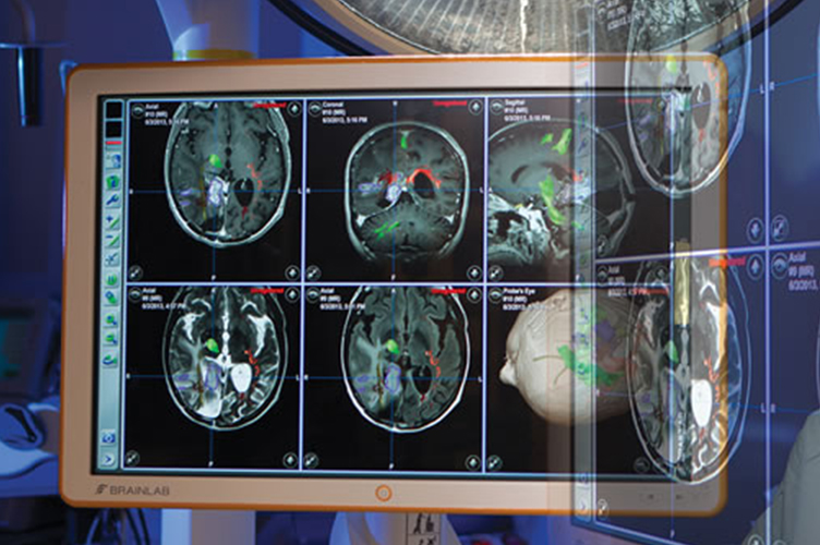 Brain scans with various highlights on them fill a giant computer screen.
