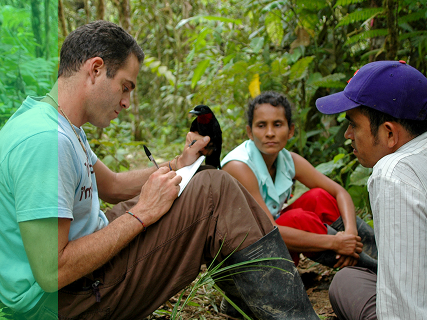 A student holding a bird takes notes while sitting in a rainforest with two others.