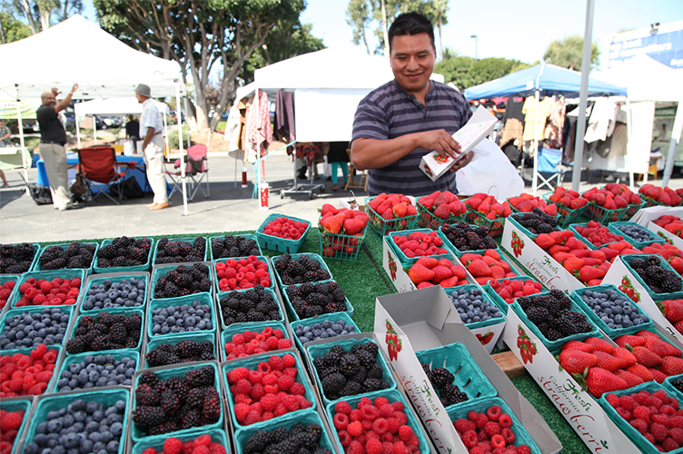 A shopper looks over a table full of berries at a farmers' market.