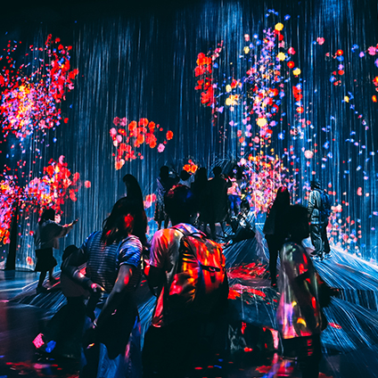 Deran Chan and fellow study abroad students pose for a cool photo at TeamLab in Japan.